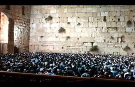 'אל מלך יושב על כסא רחמים'- פיוט ליום הכיפורים (נוסח ספרדי)